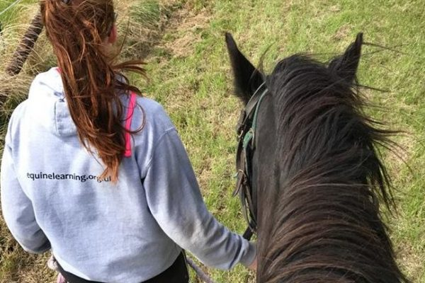Session 3 - On horse
